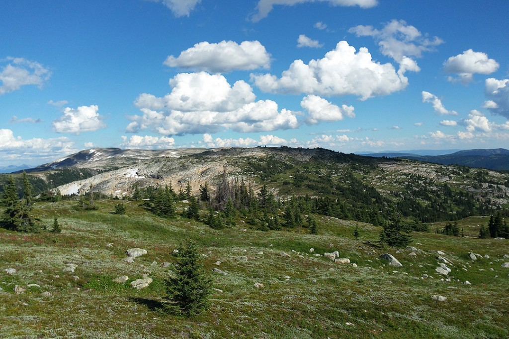 Hiking At Grizzly Lodge