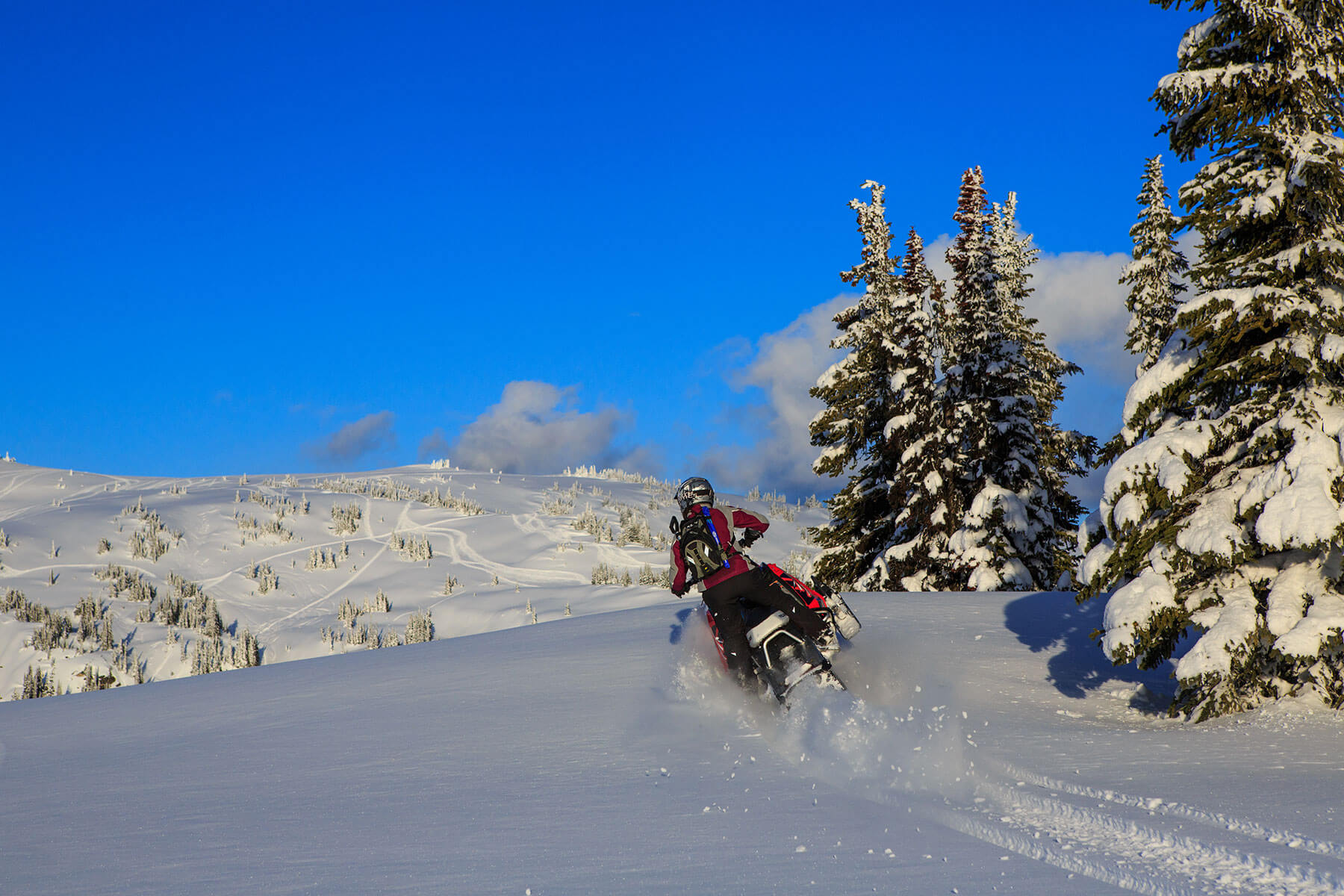 Snowmobile-carving-Grizzly-Lodge-CSF